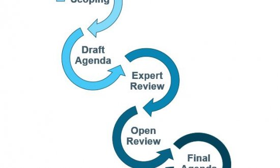 Research Agenda Development Process
